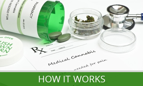 How Medical Marijuana Works